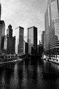 Reflections On The Chicago River